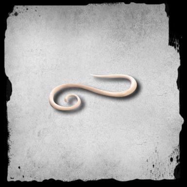 3 5mm Luinen Laajennuskoru -hook Spiral